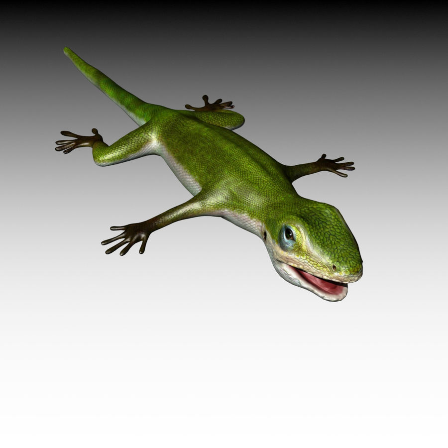 Lizard 3D Lowpoly Model Rigged & Animated royalty-free 3d model - Preview no. 12