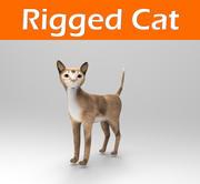 Cat Rigged (1) modelo 3d