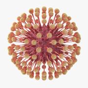 Wirus opryszczki 3d model