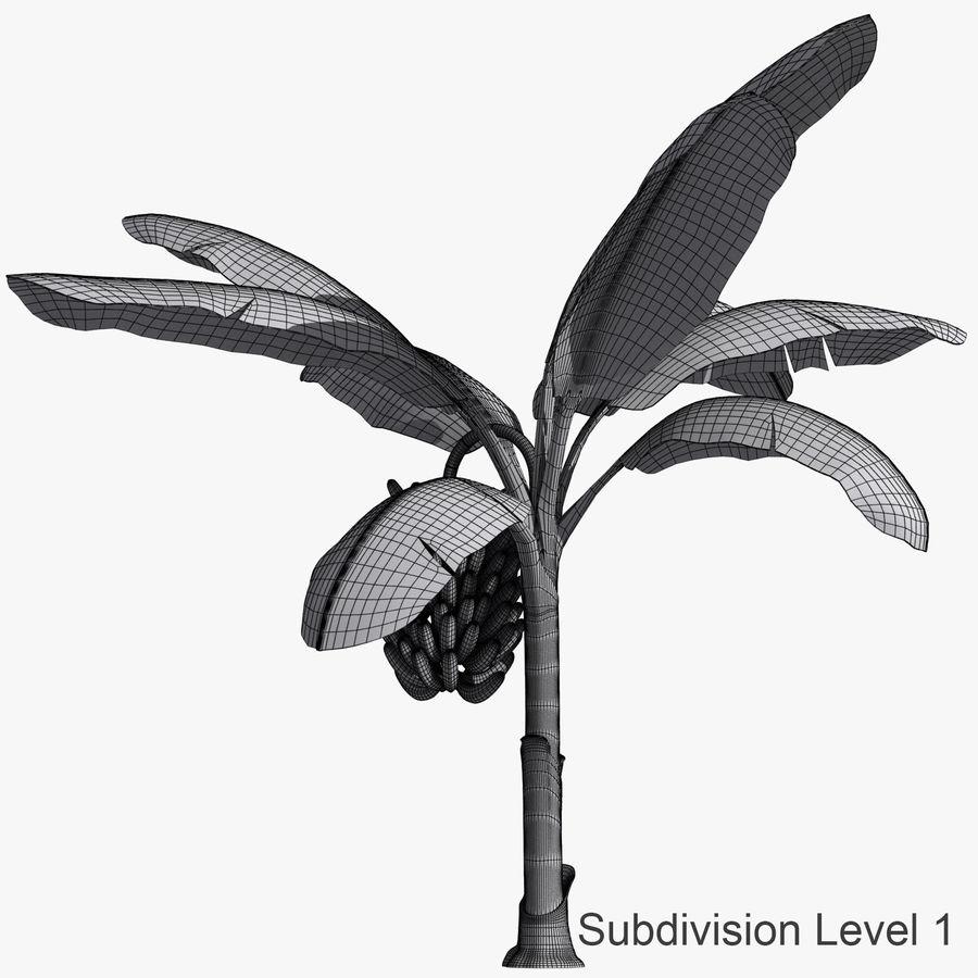 Banana Plant royalty-free 3d model - Preview no. 7