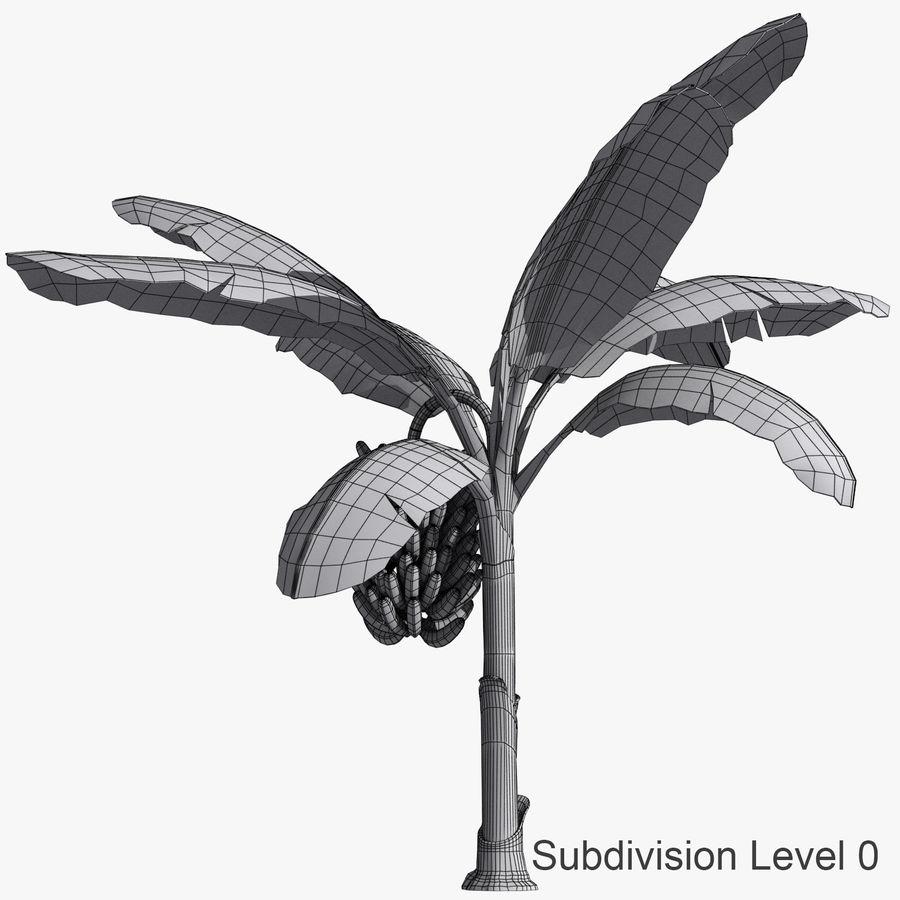 Banana Plant royalty-free 3d model - Preview no. 6