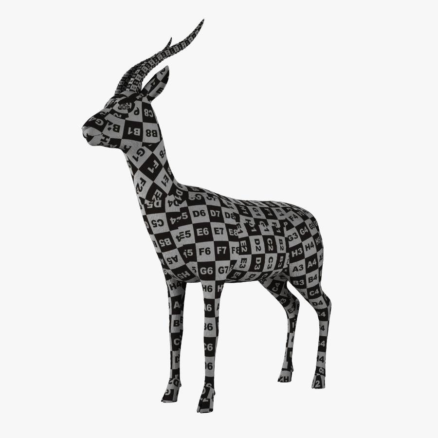 Gazelle royalty-free 3d model - Preview no. 2