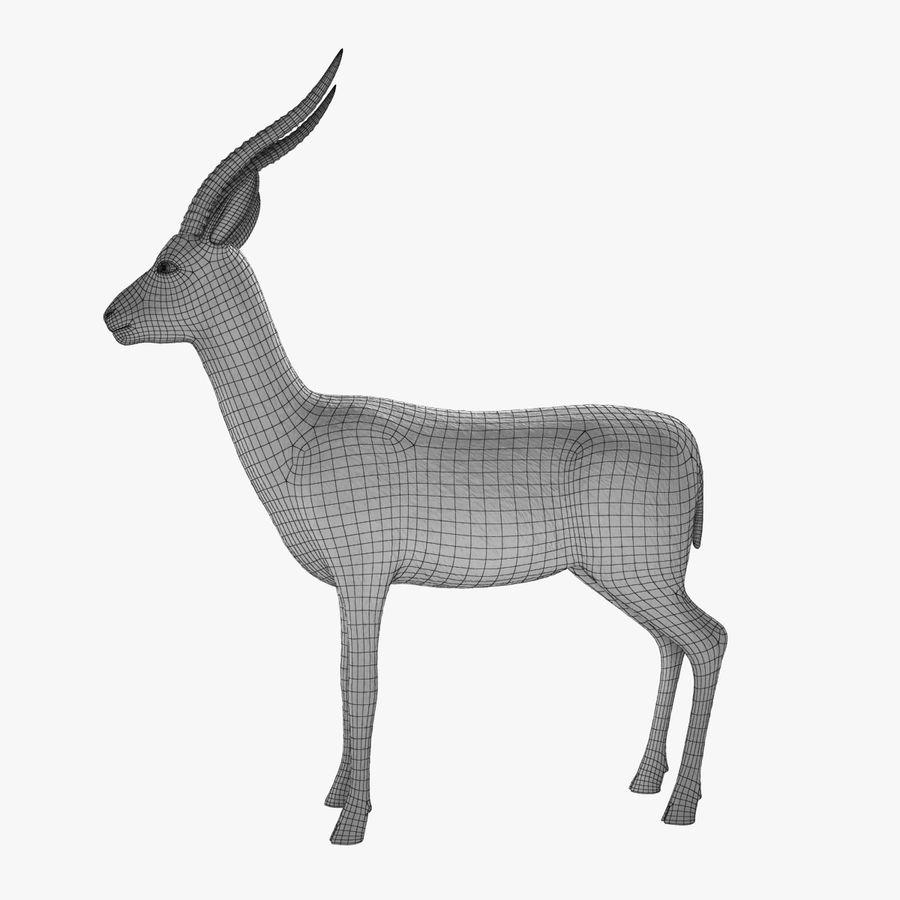 Gazelle royalty-free 3d model - Preview no. 6