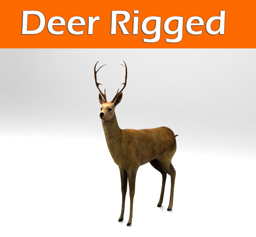 deer rigged royalty-free 3d model - Preview no. 1