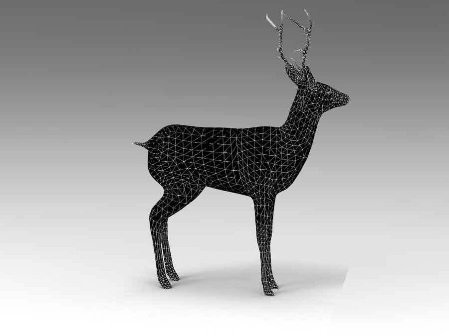 deer rigged royalty-free 3d model - Preview no. 16