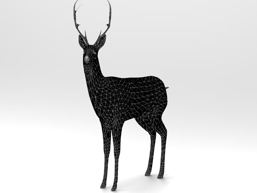 deer rigged royalty-free 3d model - Preview no. 17