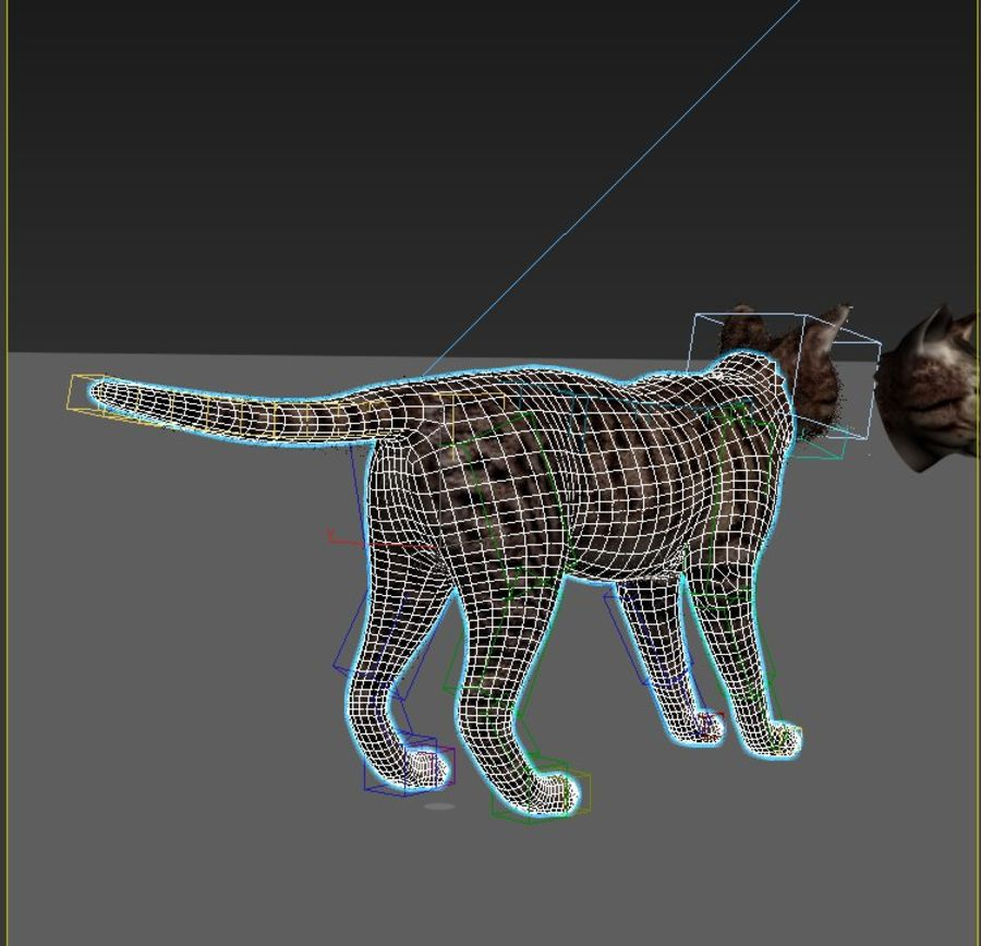 Striped Cat royalty-free 3d model - Preview no. 7