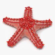 Stella rossa a forma di stella 3d model