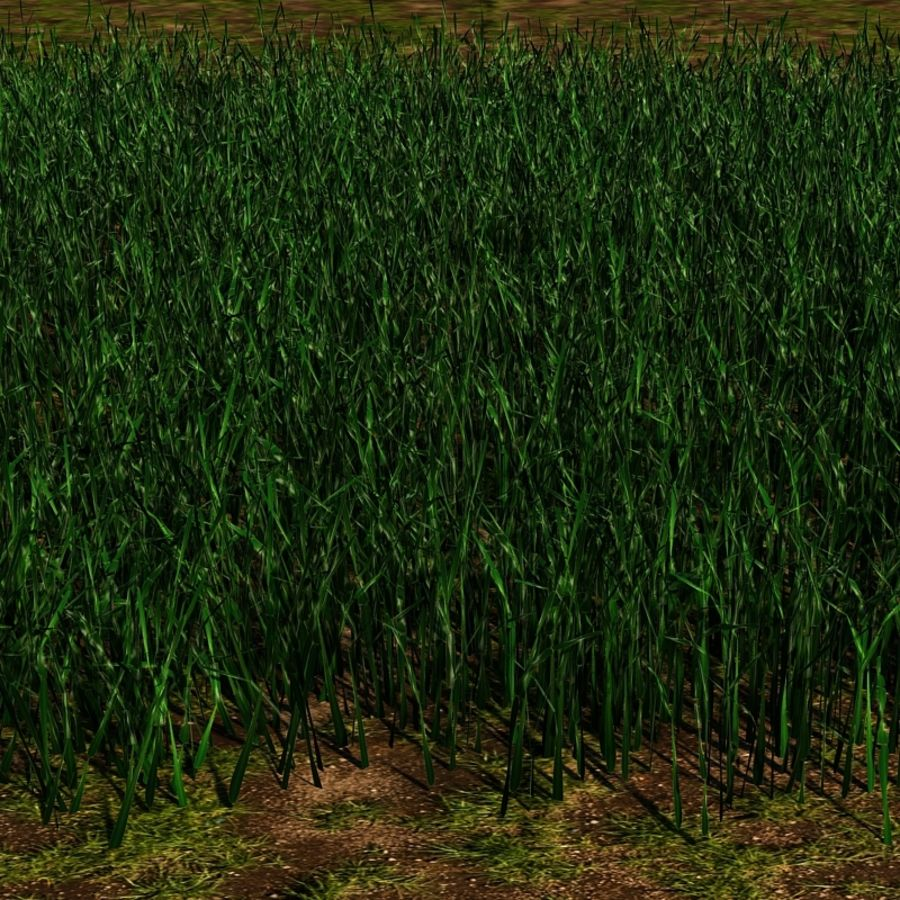 Grass Blades royalty-free 3d model - Preview no. 3