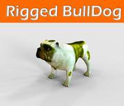 Bulldog truccato 3d model