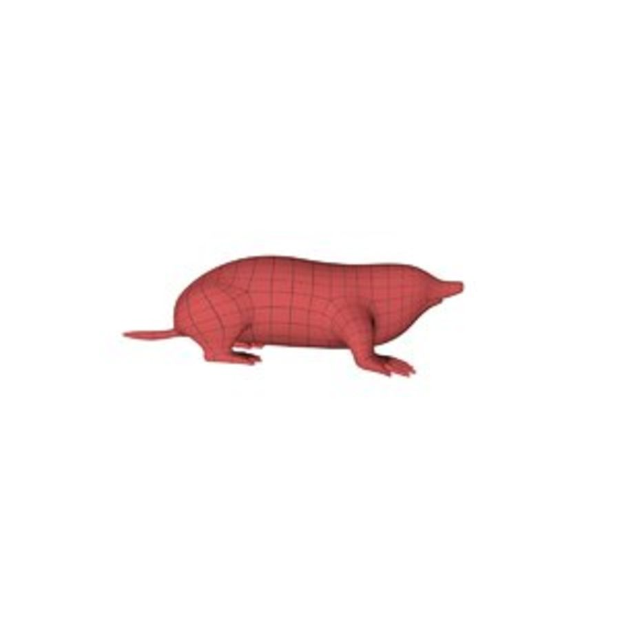 Mole base mesh royalty-free 3d model - Preview no. 1
