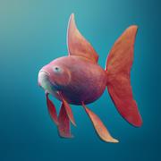 Pink Fish 3d model