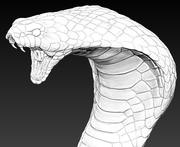 Cobra head 3d model