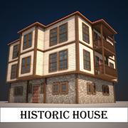 역사적인 집 3d model