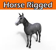 paarden getuigd (1) 3d model