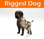 dog rigged(1) 3d model