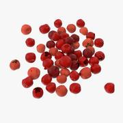 Red Peppercorns 3d model