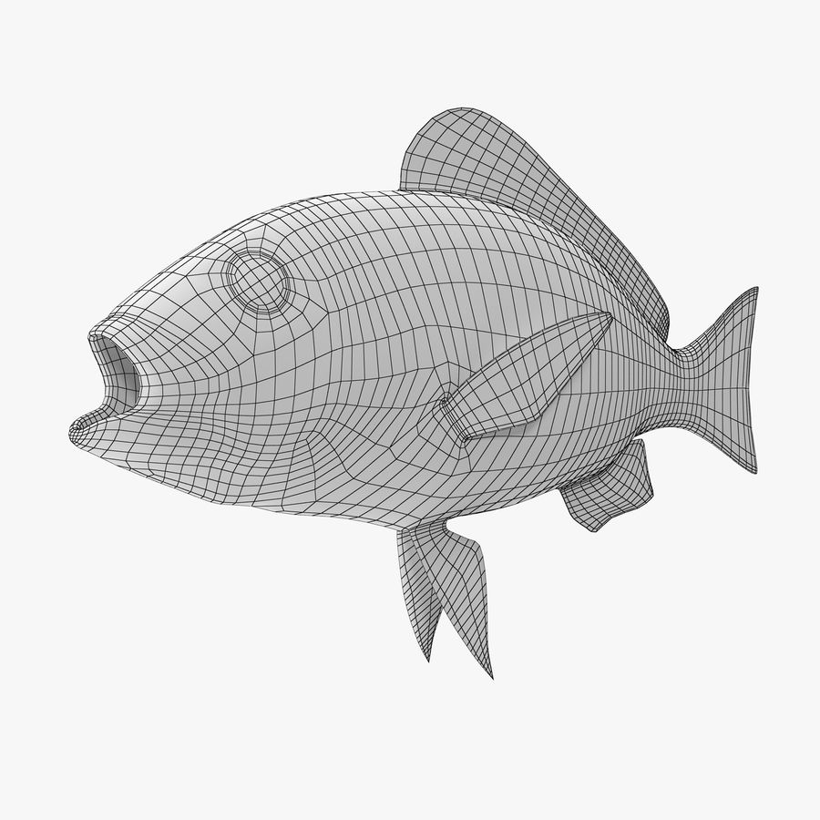 Pacific Red Snapper royalty-free 3d model - Preview no. 8