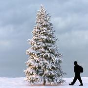 Winter Tree 09 3d model