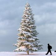Winter Tree 07 3d model