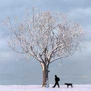 Árbol de invierno 02 modelo 3d