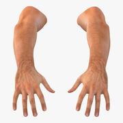 Ręce człowieka 3d model