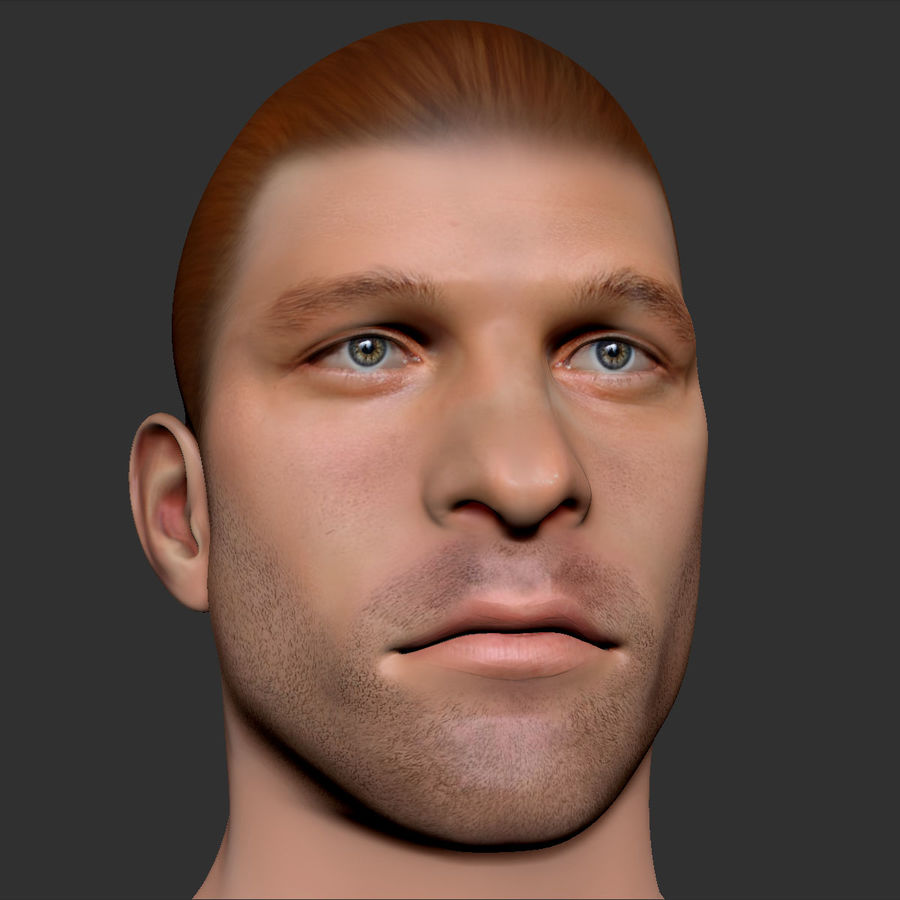 男性の頭3 royalty-free 3d model - Preview no. 10