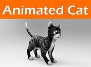Katze animiert 3d model