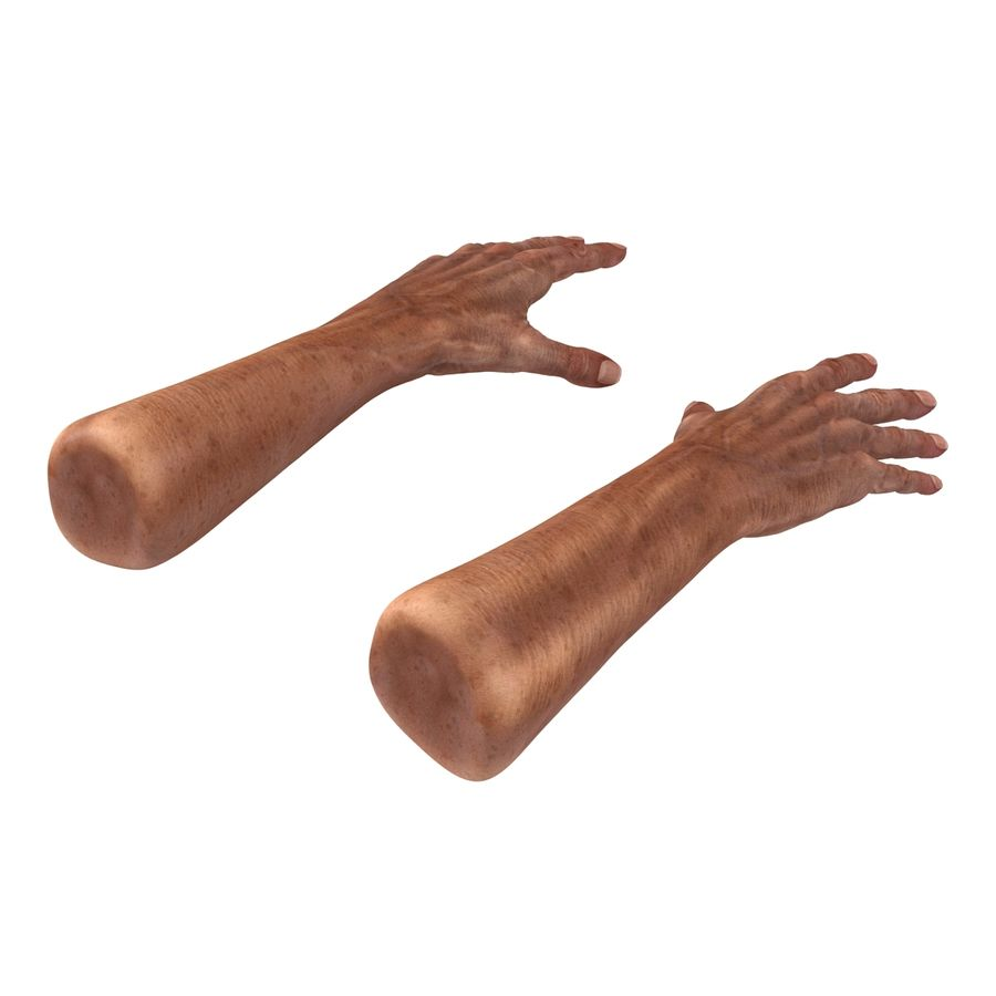 Old Man Hands 3D Model royalty-free 3d model - Preview no. 5