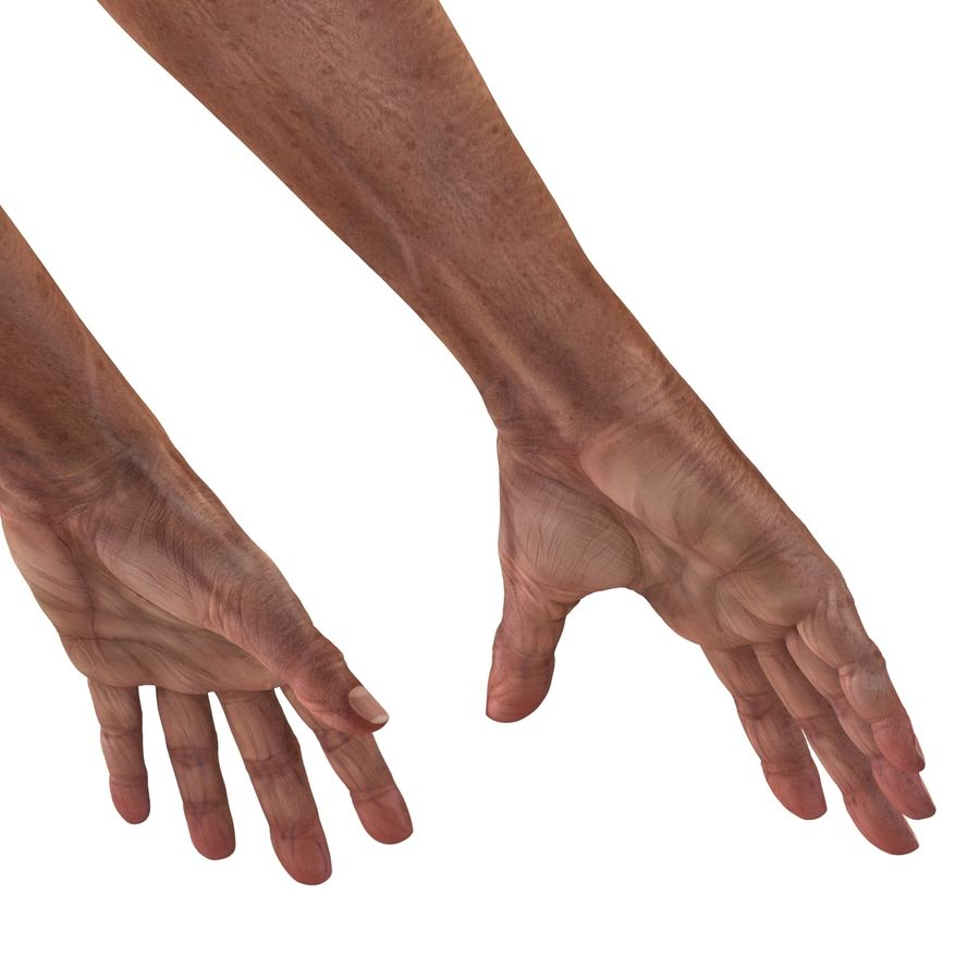 Old Man Hands 3D Model royalty-free 3d model - Preview no. 12
