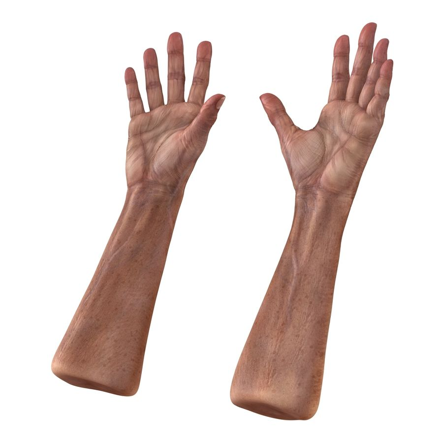 Old Man Hands 3D Model royalty-free 3d model - Preview no. 6