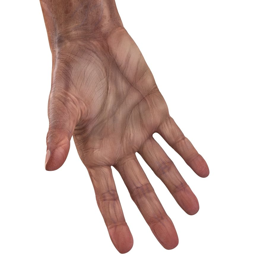Old Man Hands 3D Model royalty-free 3d model - Preview no. 17