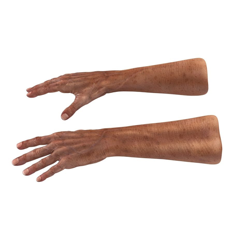 Old Man Hands 3D Model royalty-free 3d model - Preview no. 3