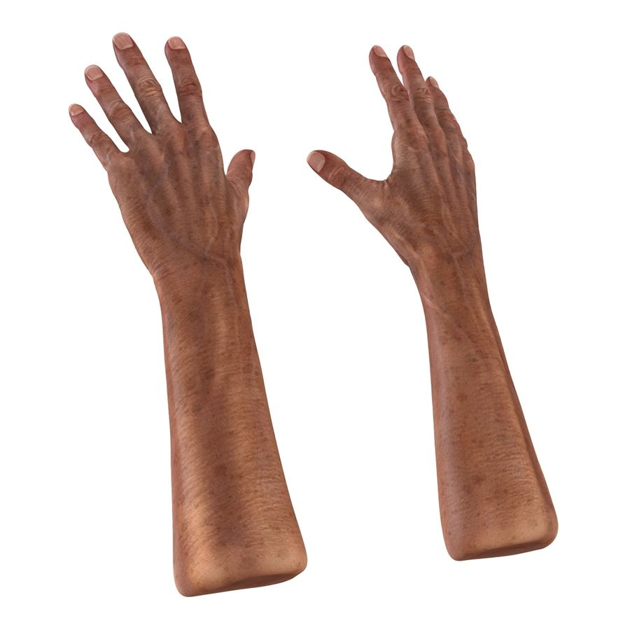 Old Man Hands 3D Model royalty-free 3d model - Preview no. 7