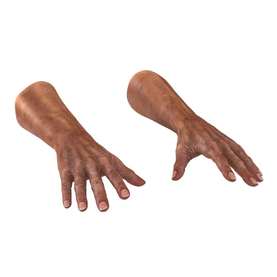 Old Man Hands 3D Model royalty-free 3d model - Preview no. 4