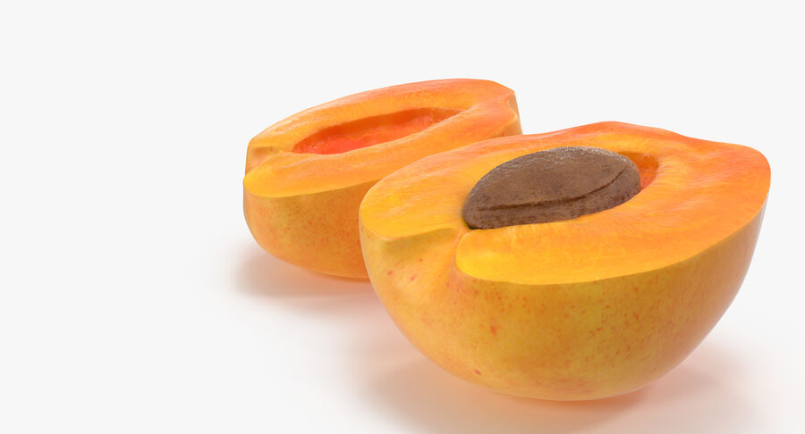 3 Apricot Cross Sections Collection royalty-free 3d model - Preview no. 21