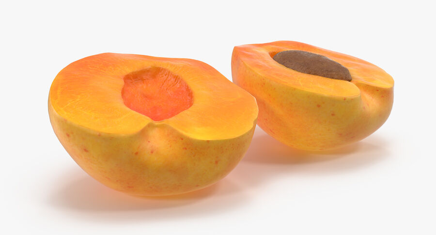 3 Apricot Cross Sections Collection royalty-free 3d model - Preview no. 22