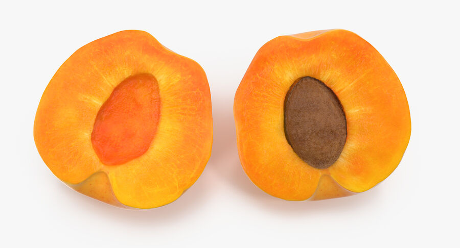3 Apricot Cross Sections Collection royalty-free 3d model - Preview no. 8
