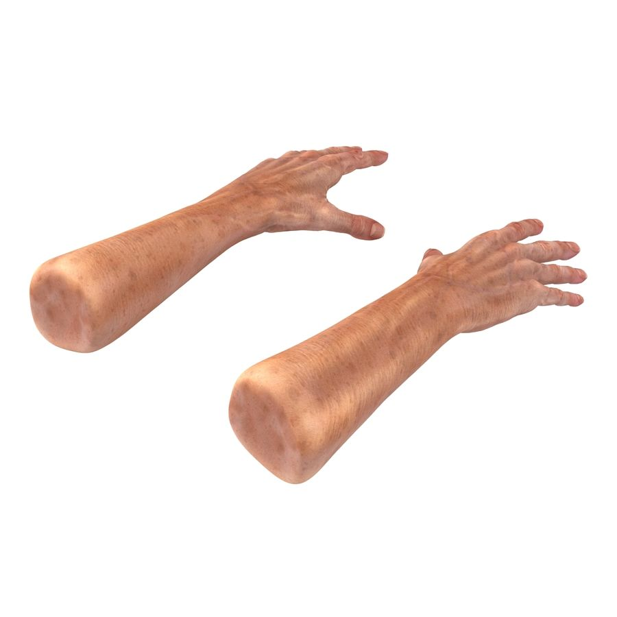 Old Man Hands 2 royalty-free 3d model - Preview no. 6