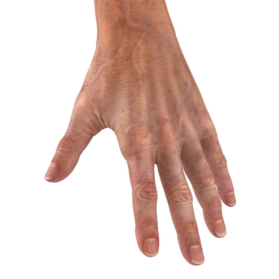Old Man Hands 2 royalty-free 3d model - Preview no. 20