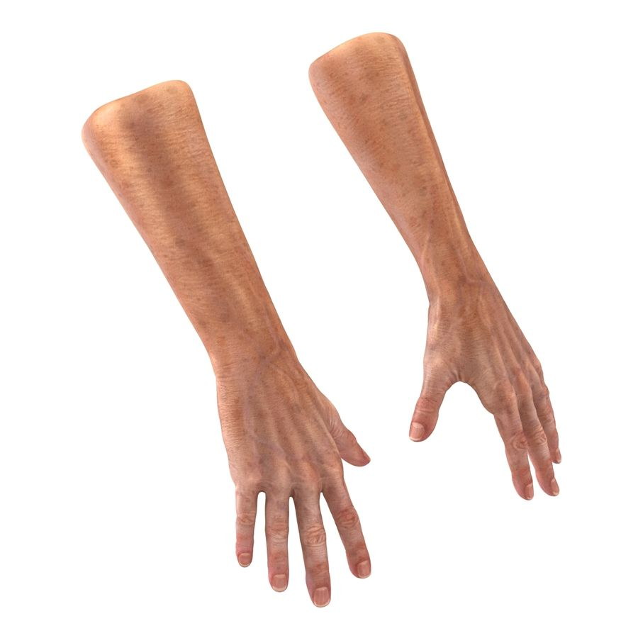 Old Man Hands 2 royalty-free 3d model - Preview no. 11