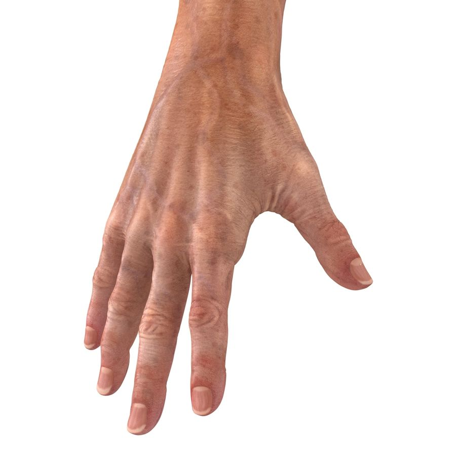 Old Man Hands 2 royalty-free 3d model - Preview no. 21