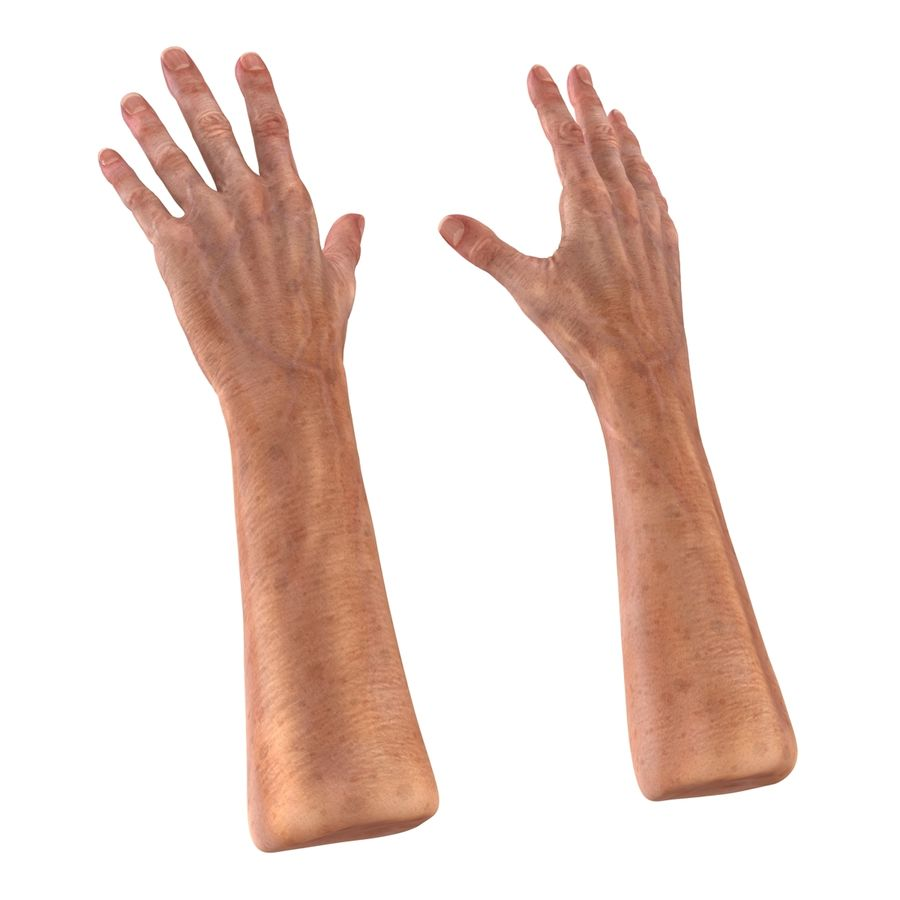 Old Man Hands 2 royalty-free 3d model - Preview no. 8