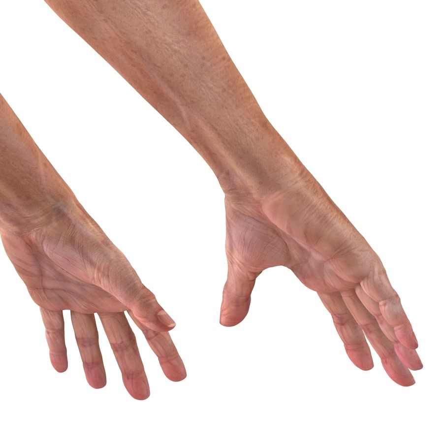 Old Man Hands 2 royalty-free 3d model - Preview no. 15