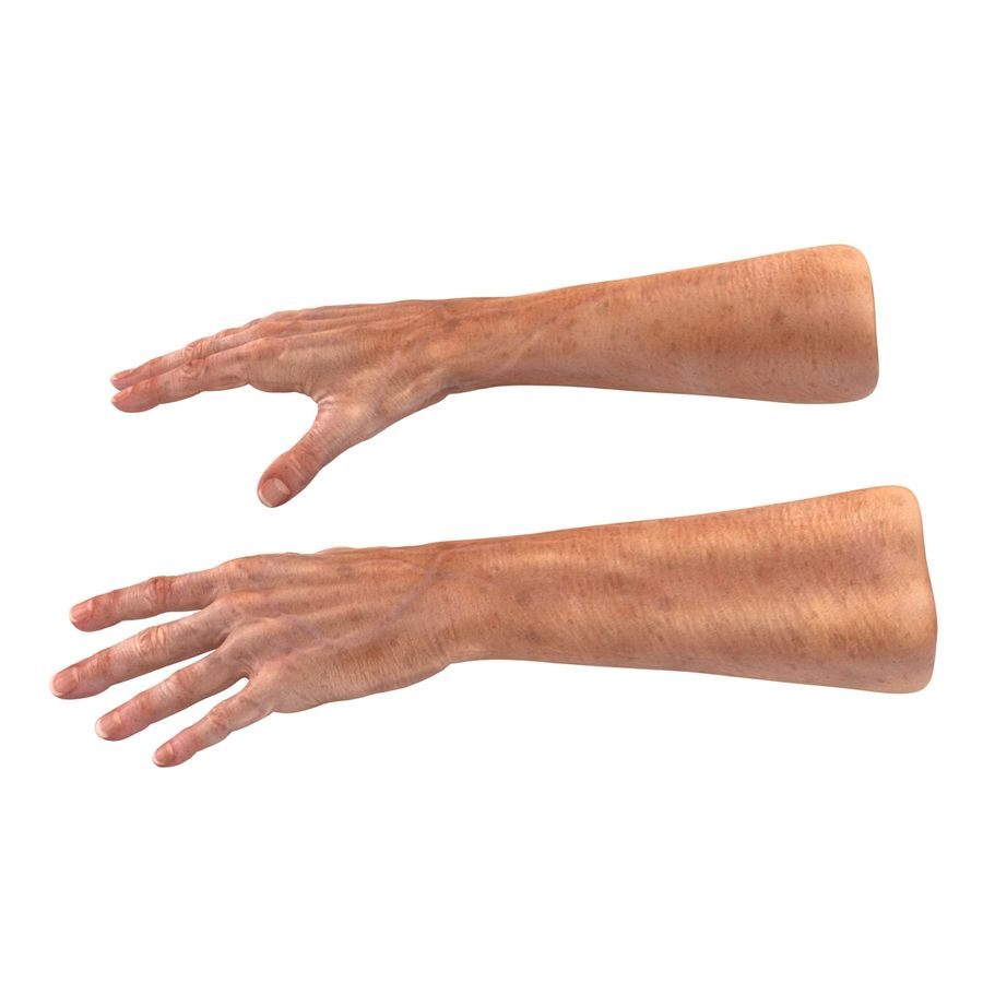Old Man Hands 2 royalty-free 3d model - Preview no. 3