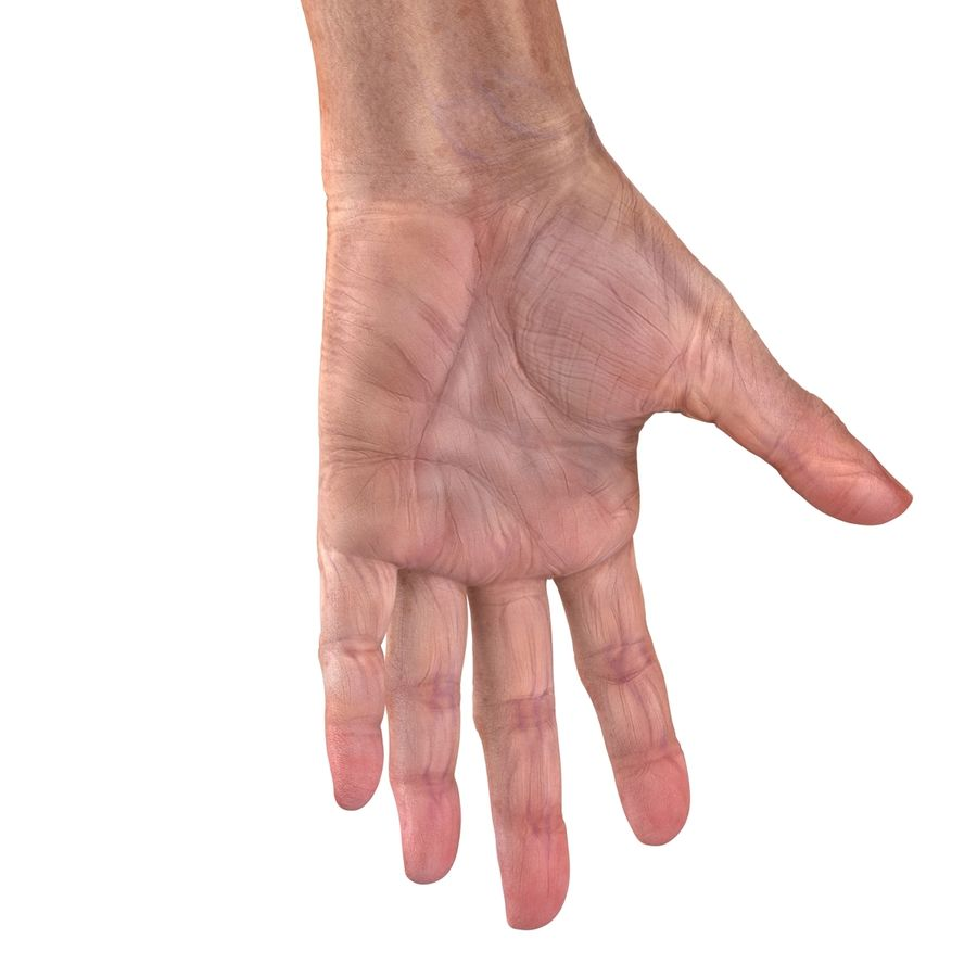 Old Man Hands 2 royalty-free 3d model - Preview no. 22