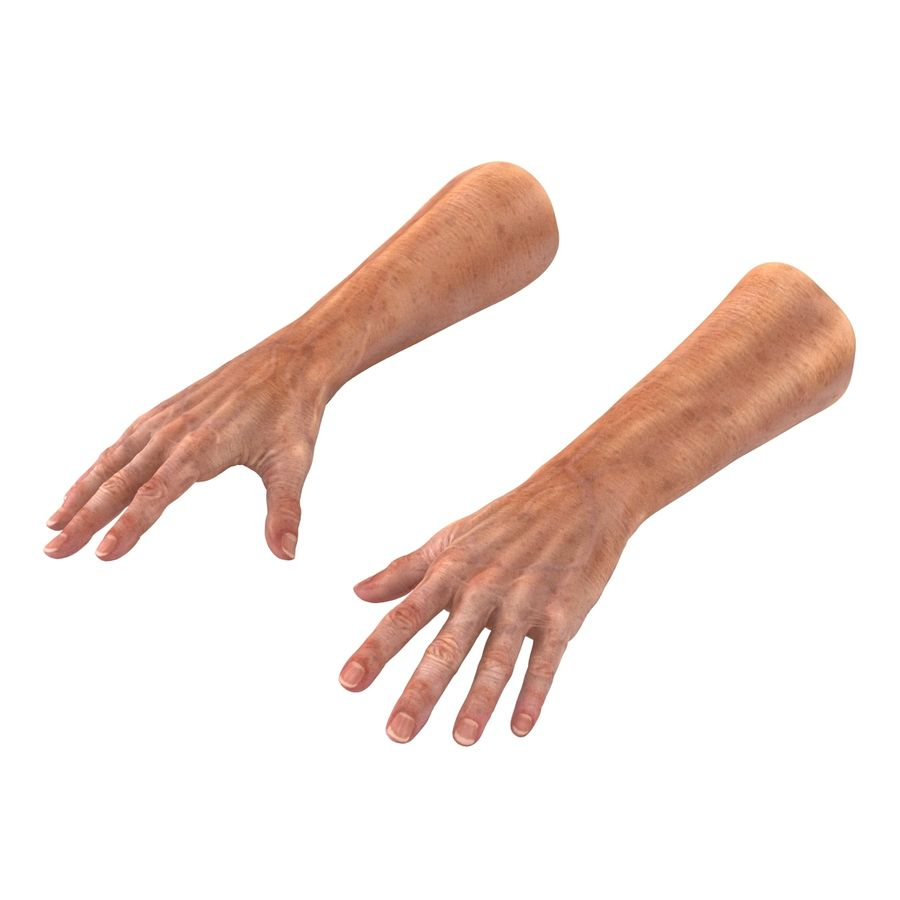 Old Man Hands 2 royalty-free 3d model - Preview no. 4