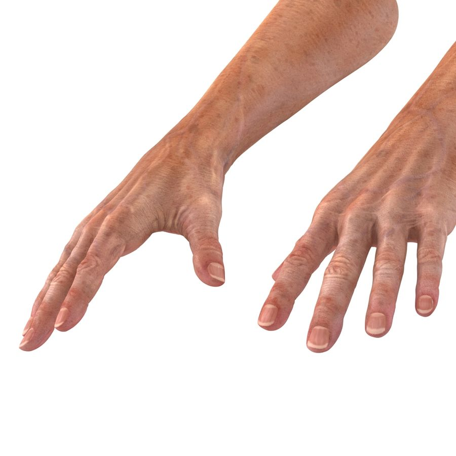 Old Man Hands 2 royalty-free 3d model - Preview no. 13