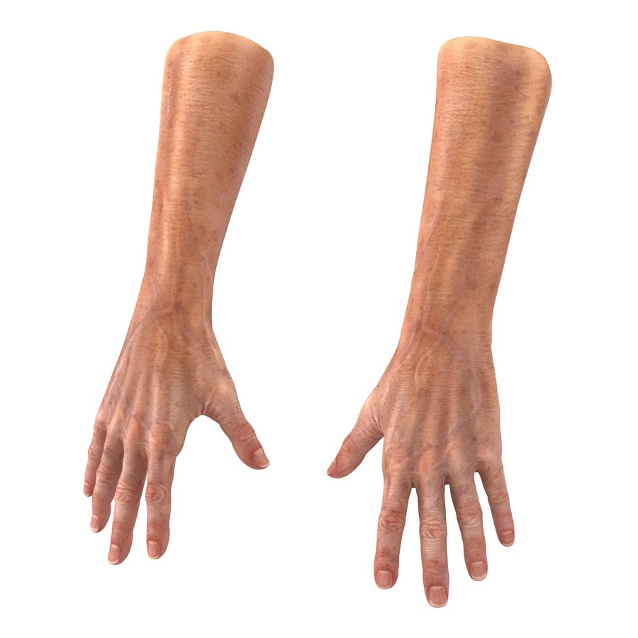 Old Man Hands 2 royalty-free 3d model - Preview no. 2