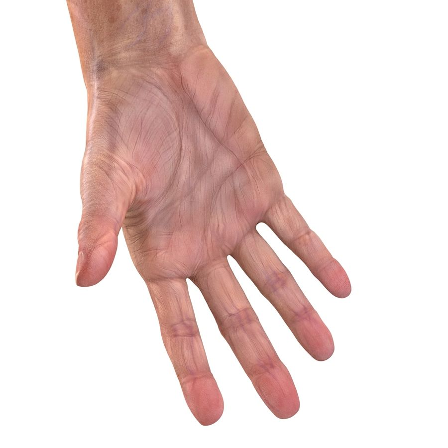 Old Man Hands 2 royalty-free 3d model - Preview no. 23